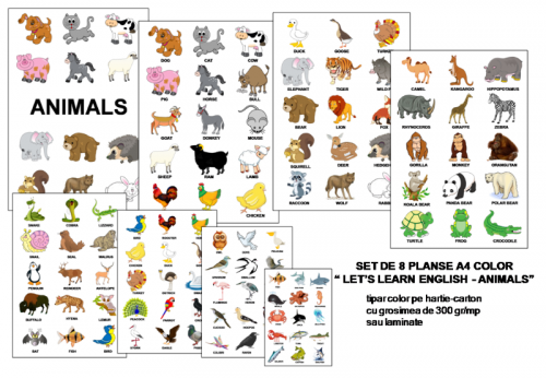 planse-english-animals