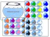 suport-vizual-pentru-sortare-dupa-culori-acvariul-cu-pesti